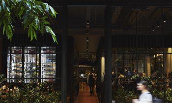 Techné Architecture And Interior Design Brunetti Project & Interview Feature Melbourne, Vic, Australiatlp Techne 002