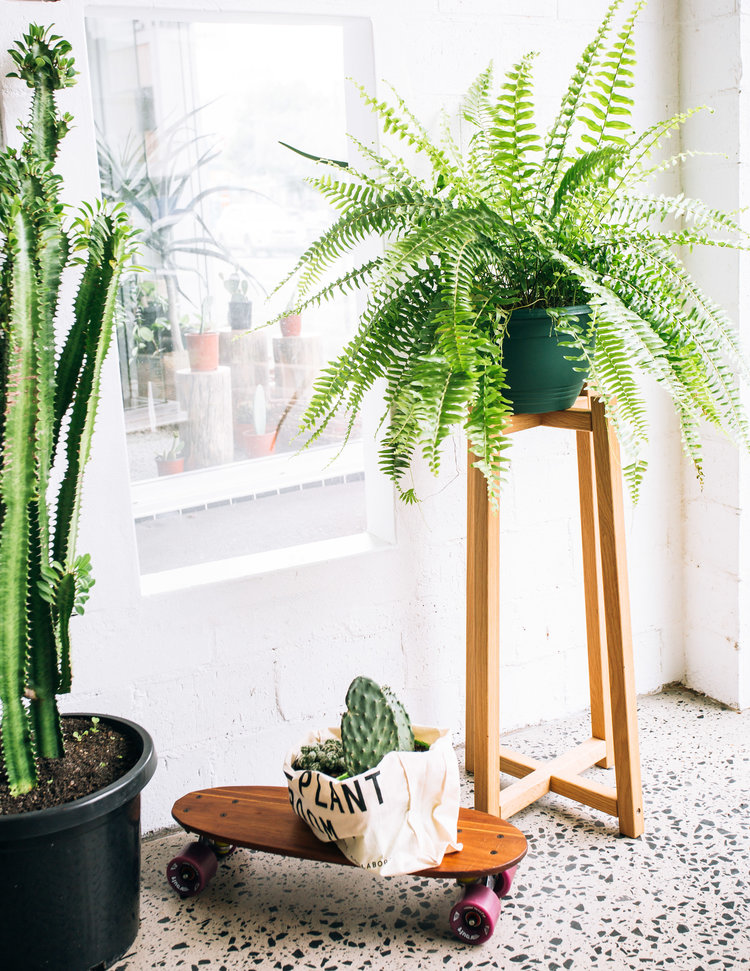 Plant Stand By Jd.lee Furniture