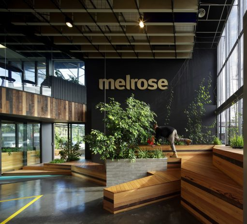 Melrose Health, Bent Architecture, The Local Project, Australian Architecture and Design (2)