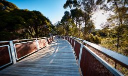 Monash Nature Walk by Urban Initiatives in Melbourne, VIC, Australia