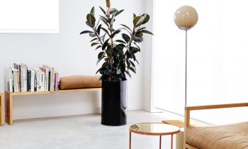 Local Interior Product Design Line Collection Floor Lamp By Douglas & Bec