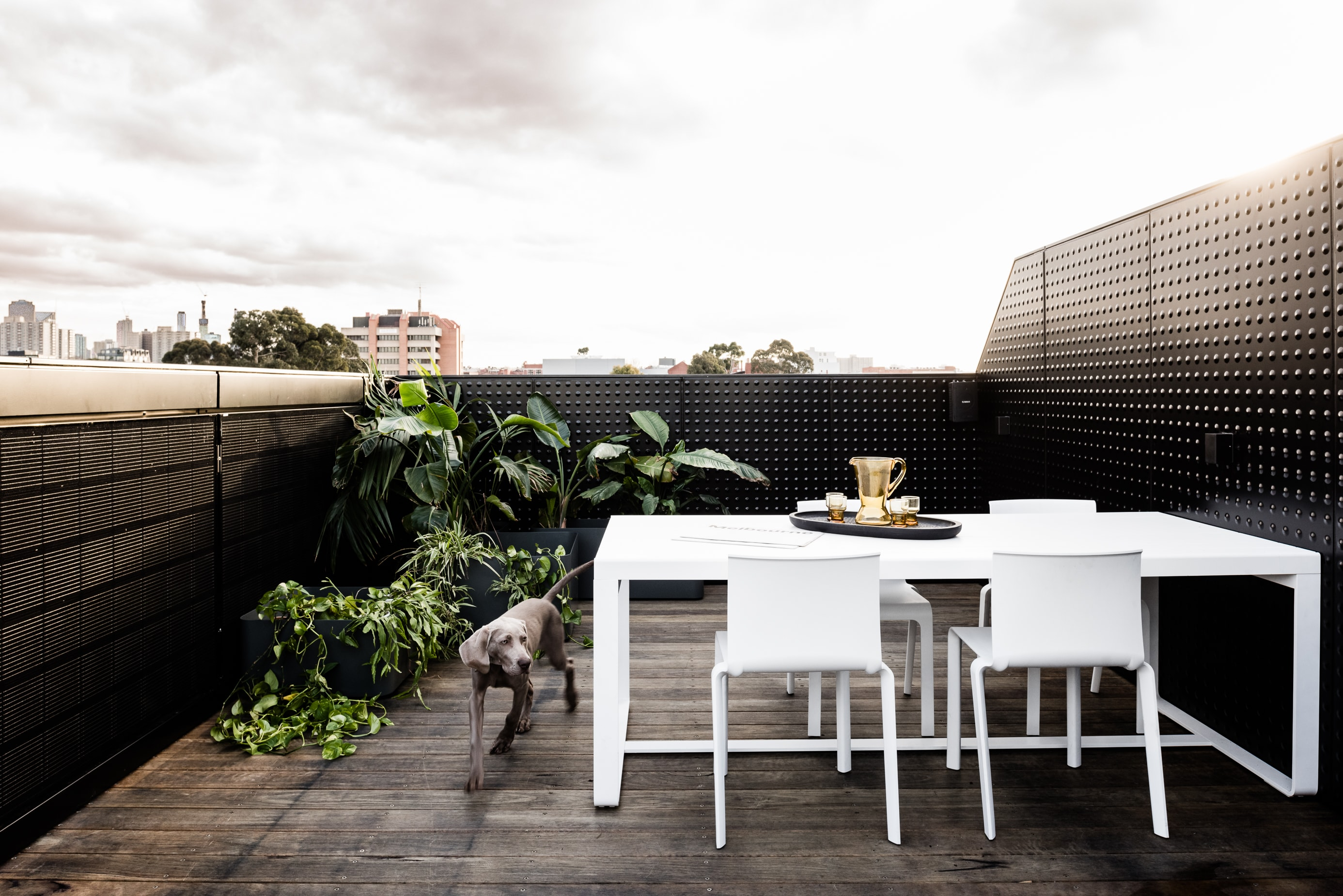 Gallery Of Campbell Street By Milieu Property Local Australian Design And Interiors Collingwood, Vic Image 28