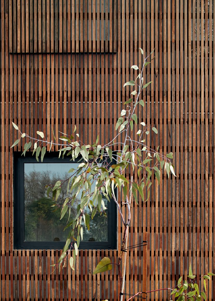 Gallery Of Northcote House 02 By Star Architecture Local Design And Interiors Northcote, Vic Image 4