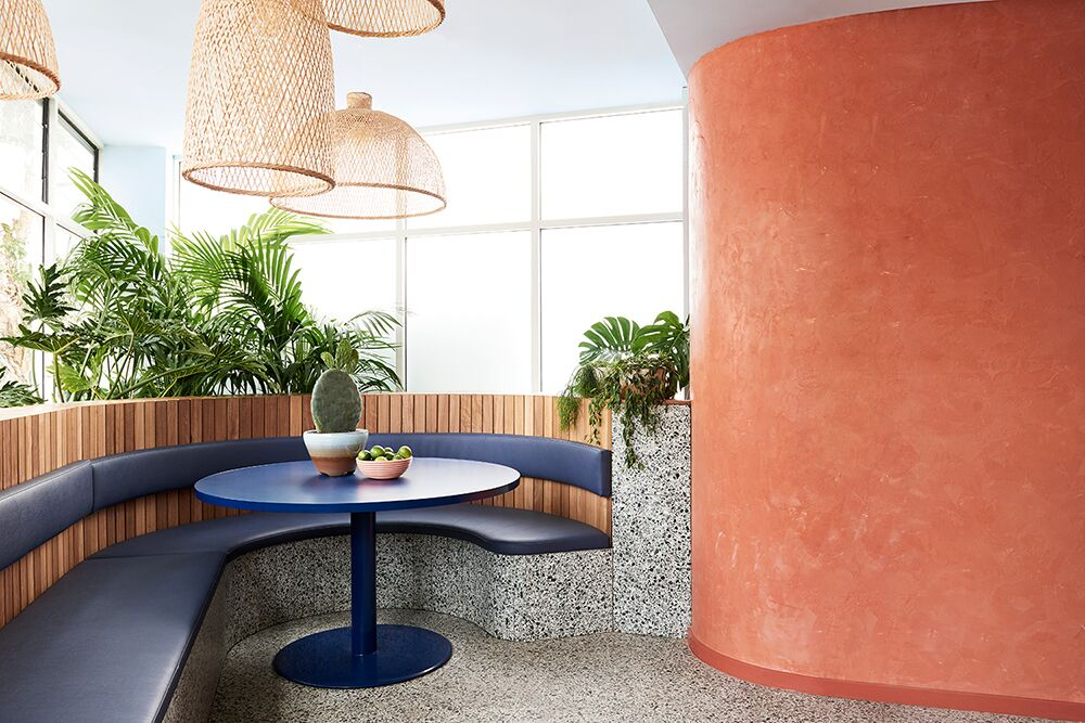 Gallery Of Fonda Bondi By Studio Esteta Local Australian Architecture And Interiors Bondi, Nsw Image 5