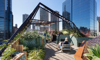 Gallery Of Phoenix Rooftop Garden By Bent Architecture Local Australian Architecture & Design Melbourne, Vic Image 1