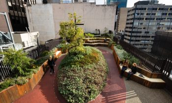 Gallery Of Growing Up Green Rooftop By Bent Architecture Local Australian Architecture & Design Melbourne, Vic Image 3