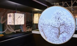 Gallery Of Kosaten By Cumulus Studio Local Australian Commerical Architecture Launceston, Tas Image 6