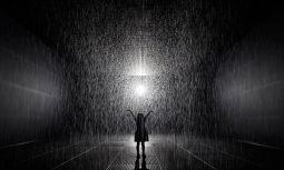 Tlp Rain Room March Studio 01