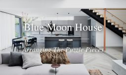 Blue Moon House Yt Thumbnail