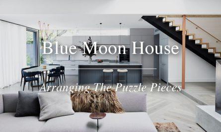 Blue Moon House Yt Thumbnail