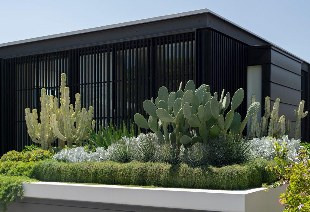 A Tiered Coastal Landscape Gordons Bay Garden By Secret Gardens Gordons Bay Nsw Australia Image 06