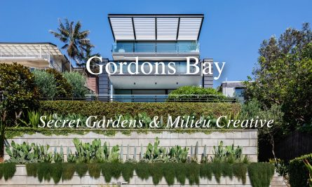 Gordons Bay By Secret Gardens And Milieu Creative Video Feature The Local Project