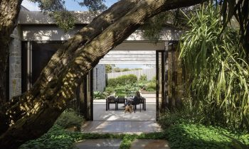 Reviving The Australian Modernist Garden By Sharon Mackay And Diana Snape Product Feature The Local Project Image 04