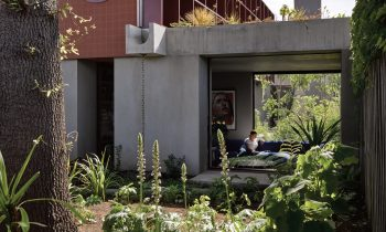 Reviving The Australian Modernist Garden By Sharon Mackay And Diana Snape Product Feature The Local Project Image 13