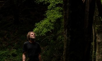 Designing For Change–david Trubridge Hawkes Bay New Zealand Image 017