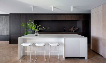 Aria Apartment By Julia English Architects And Mcgregor Westlake – Project Feature – The Local Project Image 14
