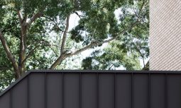 Merriwee By Templeton Architecture Project Feature The Local Project Image 31