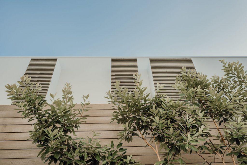 Modern Queenslander – Sunshine Beach House By Teeland Architects Image 5