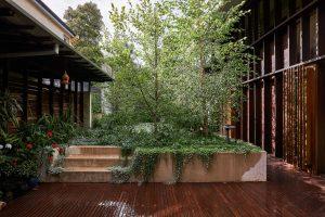 Y3 Garden By Dan Young Landscape St Lucia Qld Australia Image 06
